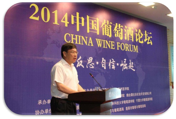 Chairman of Weilong Wine---Mr. Wang Zhenhai